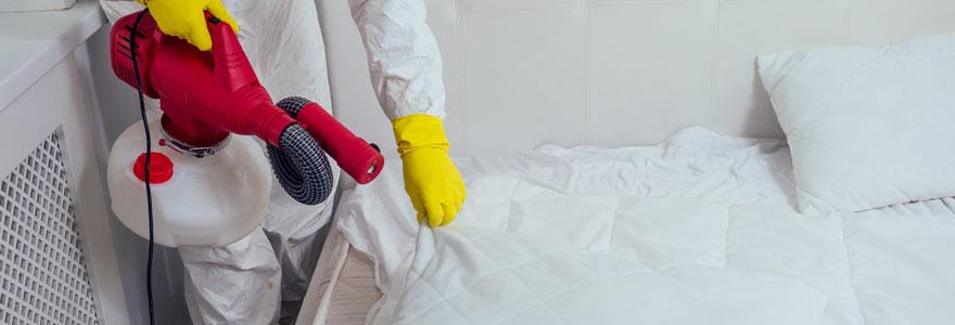 Traitement de punaises de lit